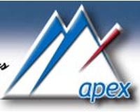 Apex Insurance Services